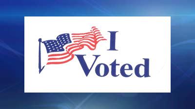 I Voted Democrat 2014